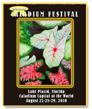 Lake Placid FL Caladium Festival